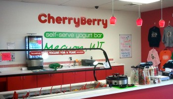 View of Cherry Berry Topping Bar in Mequon, WI